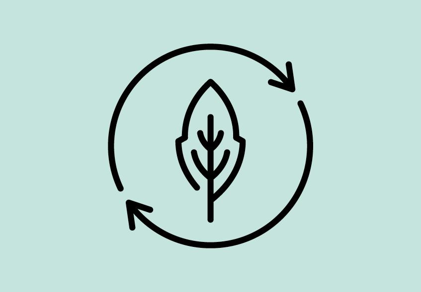 BioWaterPool#3Points-3